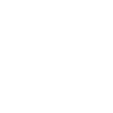 The Cork Factory